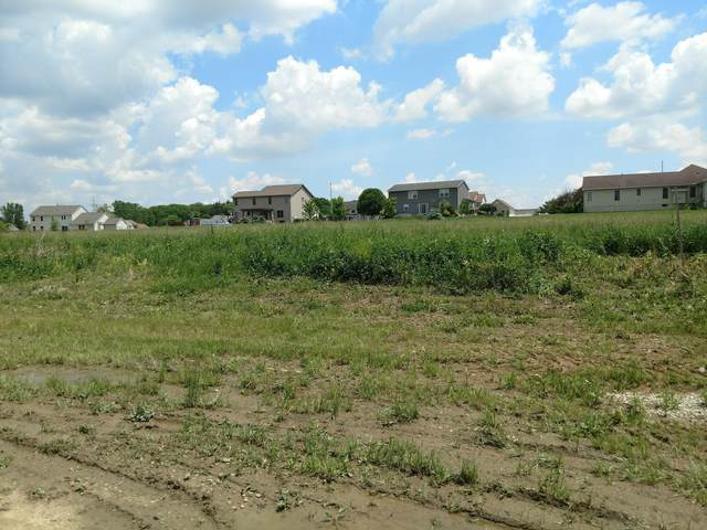 3300 Cobblestone Creek Road, Marion, OH 43302 (MLS #220017764) :: CARLETON REALTY