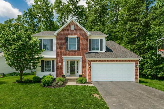 7116 Nightshade Drive, Westerville, OH 43082 (MLS #220018100) :: Core Ohio Realty Advisors