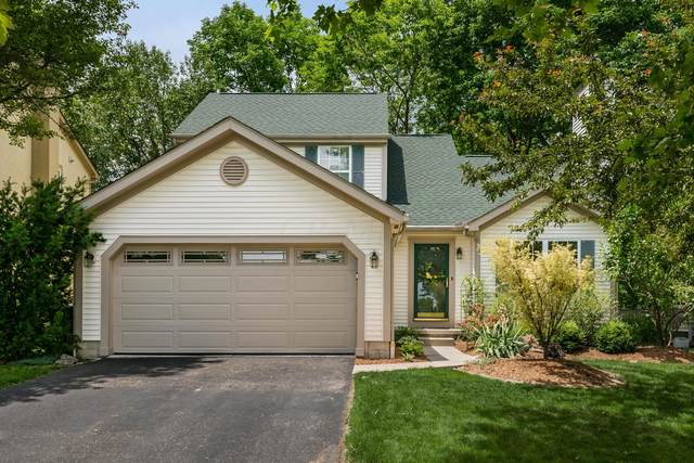 8135 Barlow Road, Westerville, OH 43081 (MLS #220018959) :: Signature Real Estate