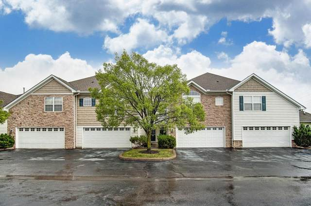 6280 Hudson Reserve Way, Westerville, OH 43081 (MLS #220020188) :: Exp Realty