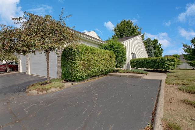 6754 Hamler Drive 29E, Canal Winchester, OH 43110 (MLS #220020908) :: Keller Williams Excel