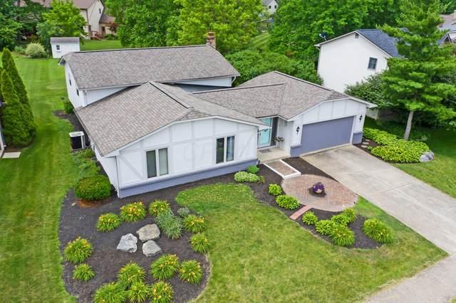 187 Shagbark Drive, Westerville, OH 43081 (MLS #220021138) :: Core Ohio Realty Advisors