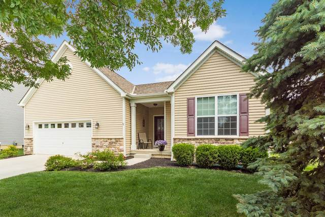 151 Chestnut Estates Drive, Commercial Point, OH 43116 (MLS #220021151) :: RE/MAX ONE