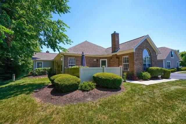 352 Park Woods Lane, Powell, OH 43065 (MLS #220021301) :: Signature Real Estate