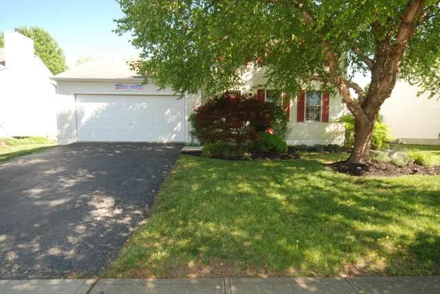 1202 Tarragon Drive, Marysville, OH 43040 (MLS #220021394) :: The Holden Agency