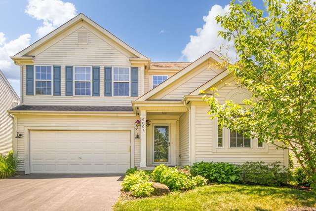 6001 Hilltop Trail Drive, New Albany, OH 43054 (MLS #220021415) :: Signature Real Estate