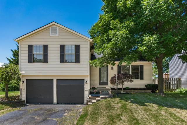8607 Broadacre Drive, Powell, OH 43065 (MLS #220021430) :: Sam Miller Team
