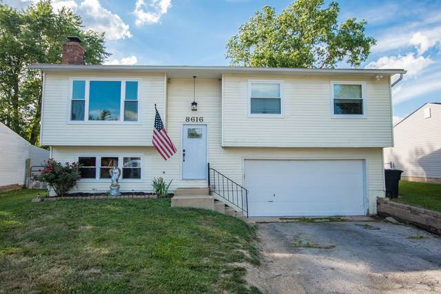 8616 Abbot Cove Avenue, Galloway, OH 43119 (MLS #220021517) :: Core Ohio Realty Advisors