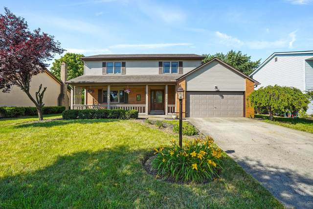 1545 Cree Court, Grove City, OH 43123 (MLS #220021527) :: RE/MAX ONE