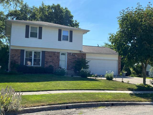251 Amfield Court, Columbus, OH 43230 (MLS #220021546) :: Signature Real Estate