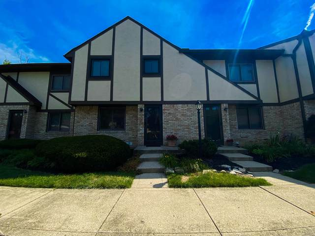 5286 Timberline Road, Columbus, OH 43220 (MLS #220021703) :: Susanne Casey & Associates