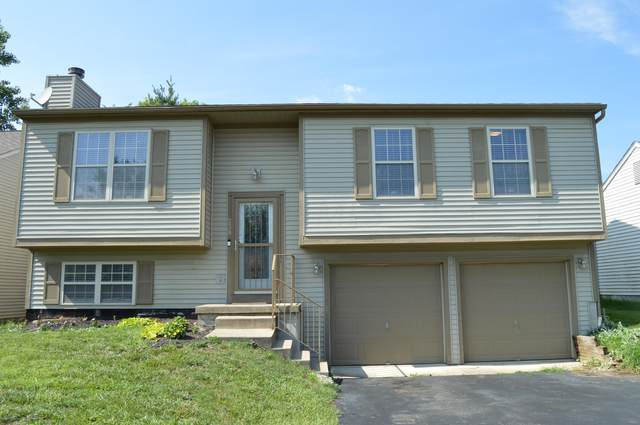 238 Chatterly Lane, Columbus, OH 43207 (MLS #220021773) :: Signature Real Estate
