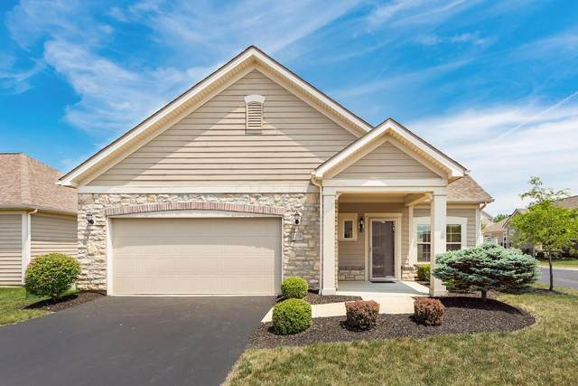 1108 Little Bear Drive, Lewis Center, OH 43035 (MLS #220021796) :: Jarrett Home Group