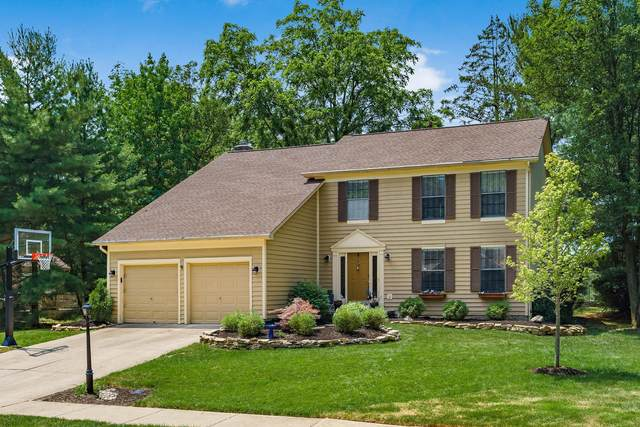 265 Winter Hill Place, Powell, OH 43065 (MLS #220021809) :: Sam Miller Team