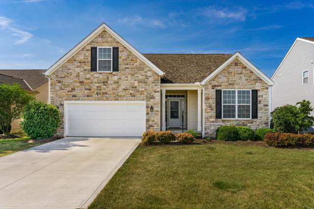 155 Chestnut Estates Drive, Commercial Point, OH 43116 (MLS #220021830) :: Berkshire Hathaway HomeServices Crager Tobin Real Estate