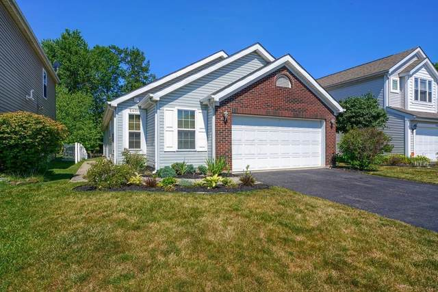 2401 Maple Hedge Way, Columbus, OH 43219 (MLS #220022040) :: The Raines Group