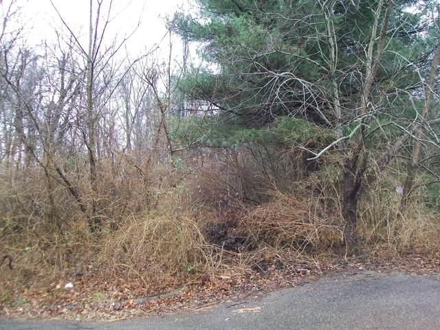 0 W Walnut Street, Lancaster, OH 43130 (MLS #220022051) :: Signature Real Estate