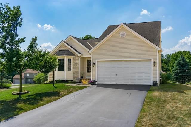 8480 Alderpoint Terrace, Pickerington, OH 43147 (MLS #220022265) :: Exp Realty