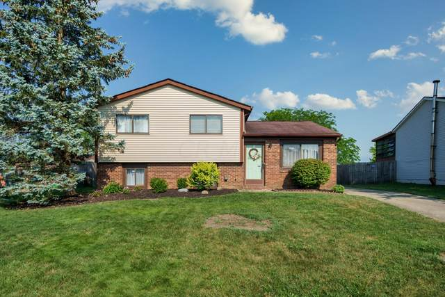 5836 Chanwick Drive, Galloway, OH 43119 (MLS #220022567) :: Core Ohio Realty Advisors
