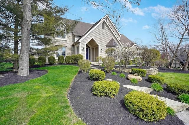 239 Lake Bluff Drive, Columbus, OH 43235 (MLS #220022696) :: BuySellOhio.com