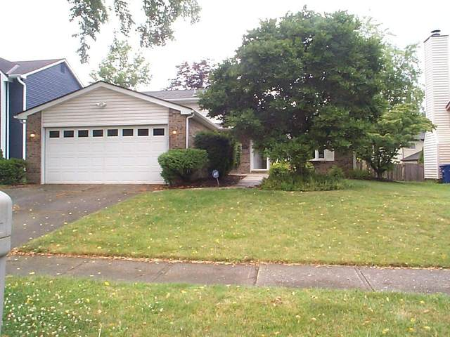 8495 Nimitz Drive, Powell, OH 43065 (MLS #220022750) :: The Clark Group @ ERA Real Solutions Realty
