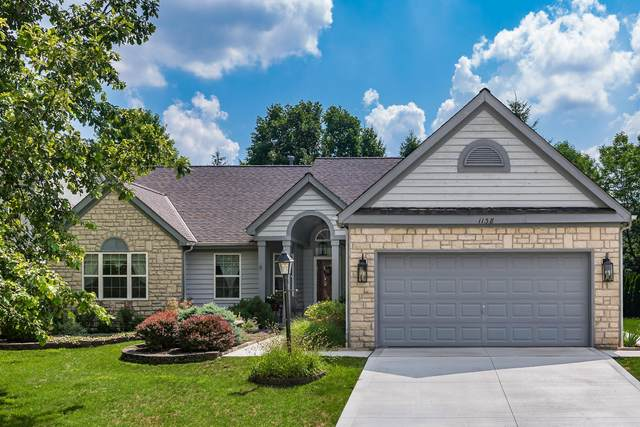 1138 Tidewater Court, Westerville, OH 43082 (MLS #220022752) :: RE/MAX Metro Plus