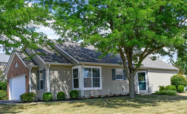 6157 Jolliff Street, Galloway, OH 43119 (MLS #220022986) :: The Jeff and Neal Team | Nth Degree Realty