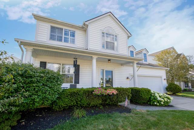 5595 Connorwill Drive, Westerville, OH 43081 (MLS #220023102) :: RE/MAX Metro Plus