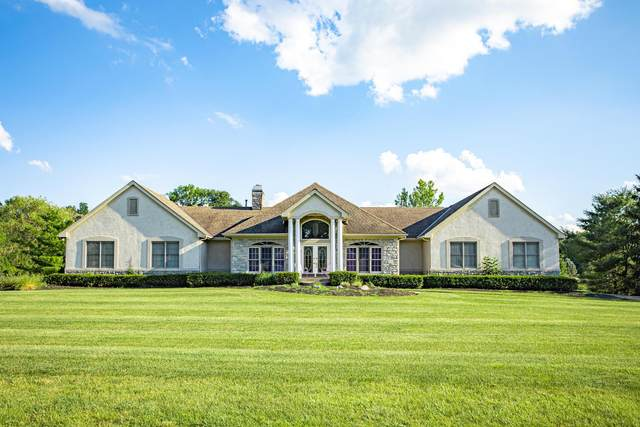 9902 Hoover Woods Road, Galena, OH 43021 (MLS #220023731) :: 3 Degrees Realty
