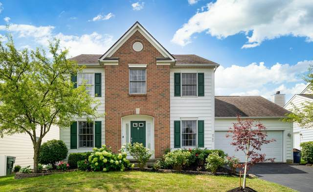 4780 Sapwood Drive, New Albany, OH 43054 (MLS #220024750) :: ERA Real Solutions Realty