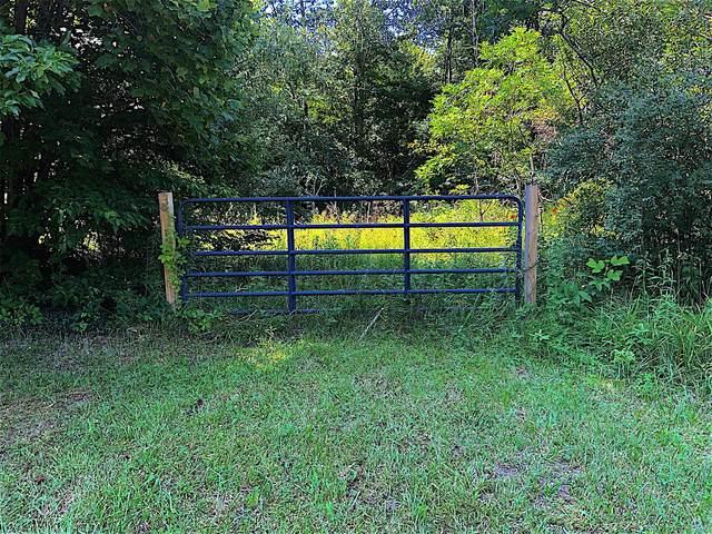 0 Irish Hollow Rd, Oak Hill, OH 45656 (MLS #220025117) :: The Holden Agency