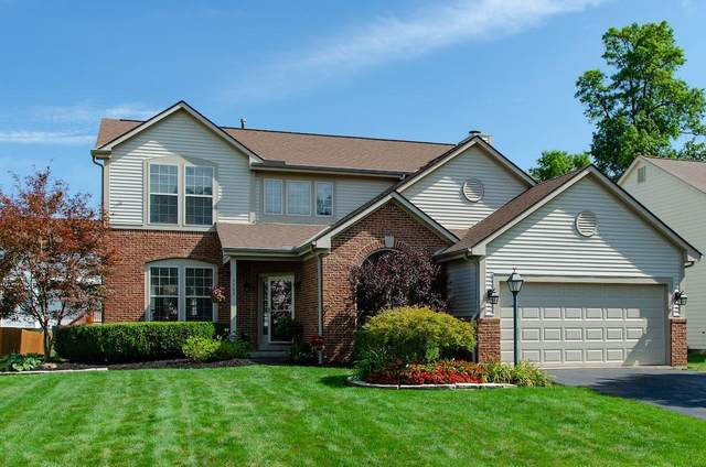 1153 Bergenia Drive, Reynoldsburg, OH 43068 (MLS #220025710) :: The Clark Group @ ERA Real Solutions Realty