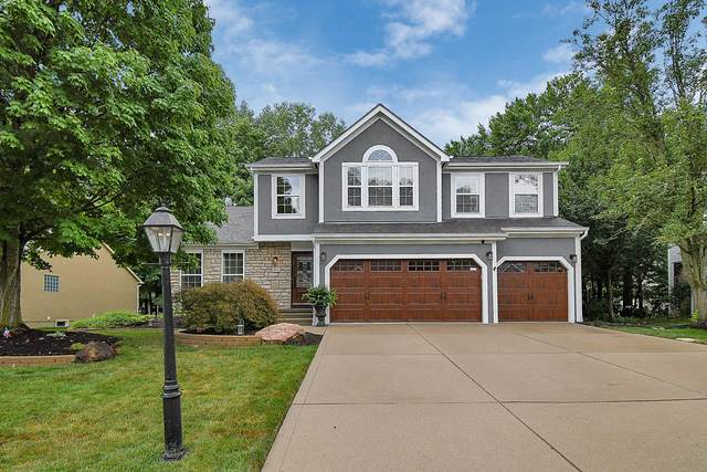 311 Tree Haven Avenue, Powell, OH 43065 (MLS #220026228) :: Susanne Casey & Associates