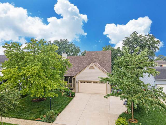 2316 Sundew Avenue, Grove City, OH 43123 (MLS #220026309) :: Berkshire Hathaway HomeServices Crager Tobin Real Estate