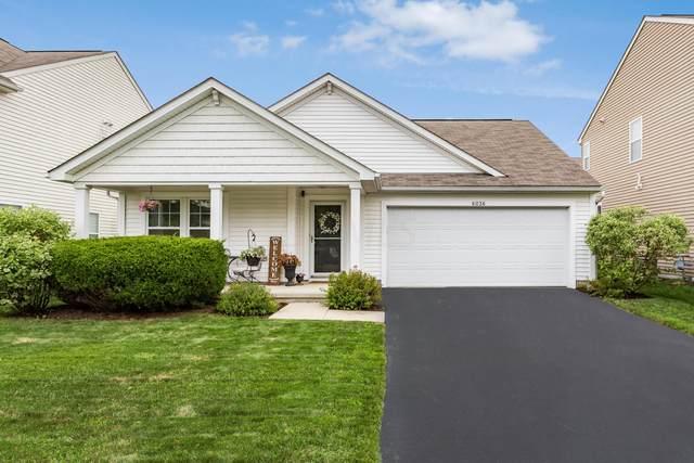 6036 Carlatun Street, Columbus, OH 43081 (MLS #220026330) :: Core Ohio Realty Advisors