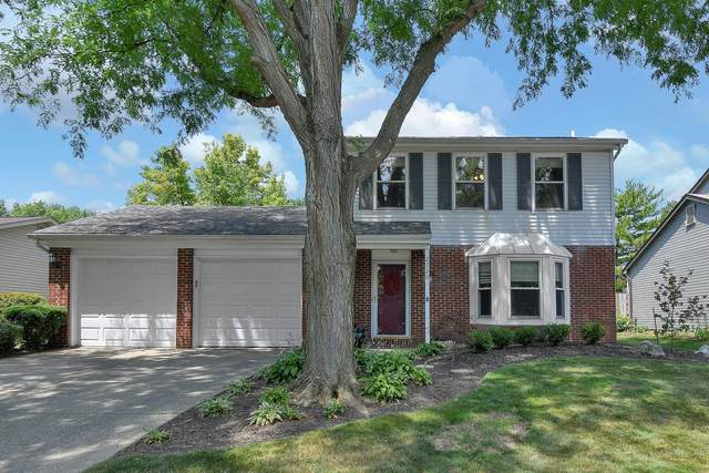 2720 Lynnmore Drive, Columbus, OH 43235 (MLS #220026371) :: The Willcut Group