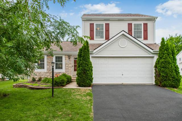 365 Rocky Springs Drive, Blacklick, OH 43004 (MLS #220026389) :: RE/MAX ONE