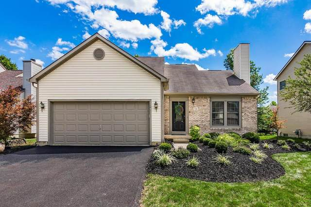 318 Basswood Street, Delaware, OH 43015 (MLS #220026451) :: Susanne Casey & Associates