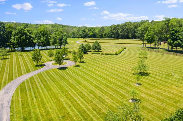 10505 Hoover Woods Road, Galena, OH 43021 (MLS #220026547) :: MORE Ohio