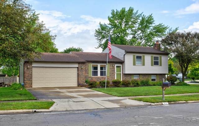 3648 Quail Hollow Drive, Columbus, OH 43228 (MLS #220026601) :: Sam Miller Team