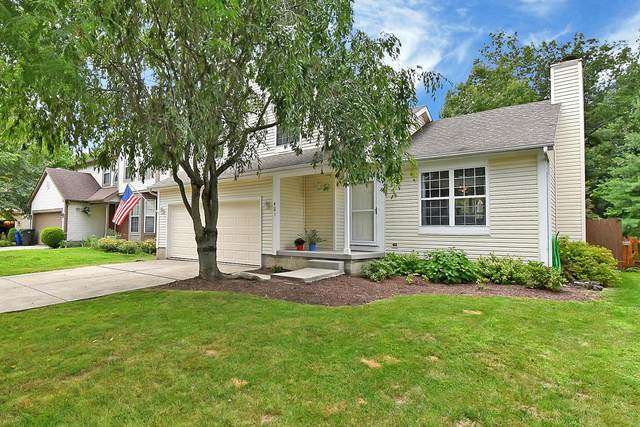 421 Scandia Street, Blacklick, OH 43004 (MLS #220026690) :: RE/MAX ONE