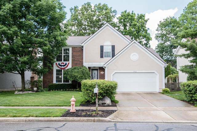 792 Lynnfield Drive, Westerville, OH 43081 (MLS #220026730) :: RE/MAX Metro Plus