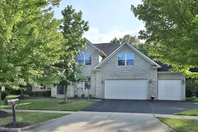 8586 Northbluff Lane, Powell, OH 43065 (MLS #220026732) :: Signature Real Estate