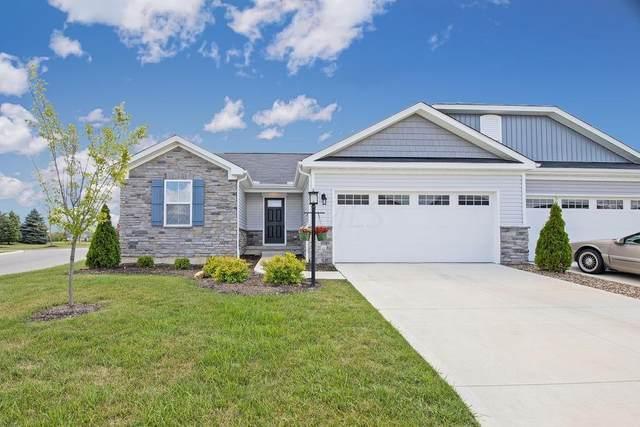 307 Amelia Lane, Delaware, OH 43015 (MLS #220026771) :: The KJ Ledford Group