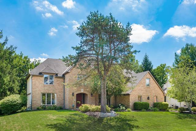 3764 Waverly Place Drive, Lewis Center, OH 43035 (MLS #220027468) :: Keller Williams Excel