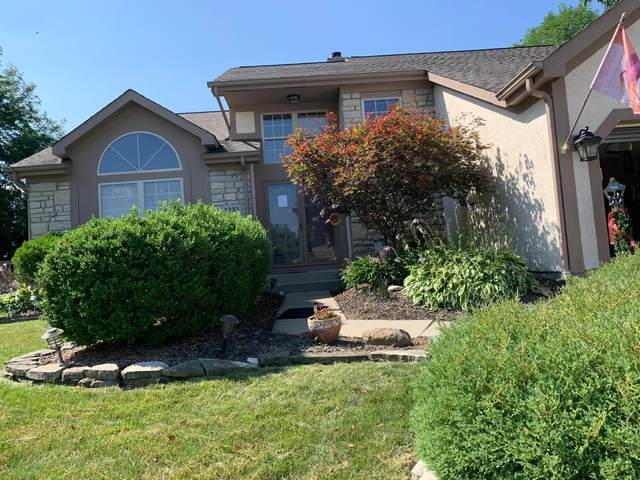 1333 Cobblestone Avenue, Westerville, OH 43081 (MLS #220027502) :: CARLETON REALTY