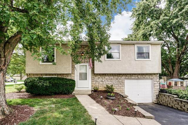 6961 Britwell Lane, Reynoldsburg, OH 43068 (MLS #220027555) :: The Willcut Group