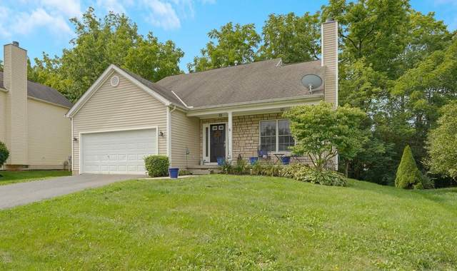 7849 Edgewater Drive, Canal Winchester, OH 43110 (MLS #220027571) :: RE/MAX ONE