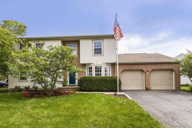 334 Pinecrest Court, Delaware, OH 43015 (MLS #220027778) :: Signature Real Estate
