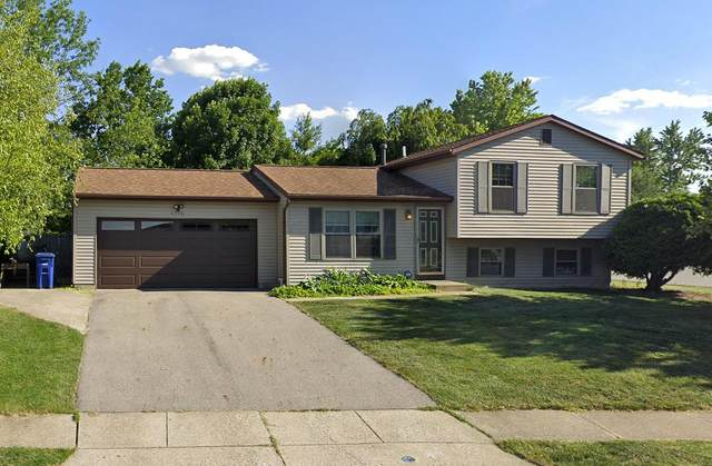 4765 Deephollow Drive, Columbus, OH 43228 (MLS #220028436) :: Keller Williams Excel